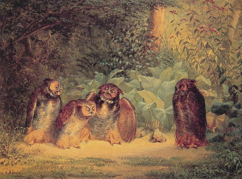 Owls. American artists