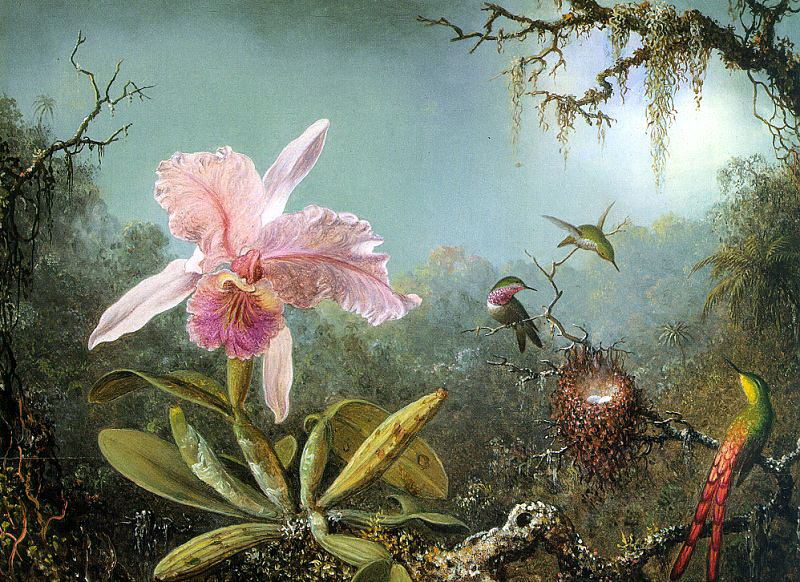 Heade, Martin Johnson (American, 1819-1904) 3. American artists