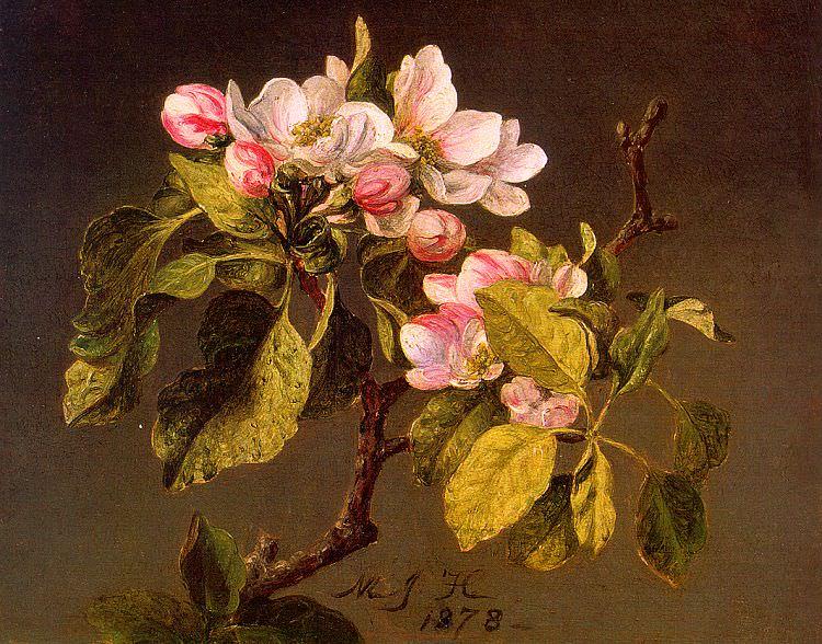 Heade, Martin Johnson (American, 1819-1904). American artists