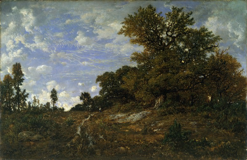 Théodore Rousseau - The Edge of the Woods at Monts-Girard, Fontainebleau Forest. Metropolitan Museum: part 3