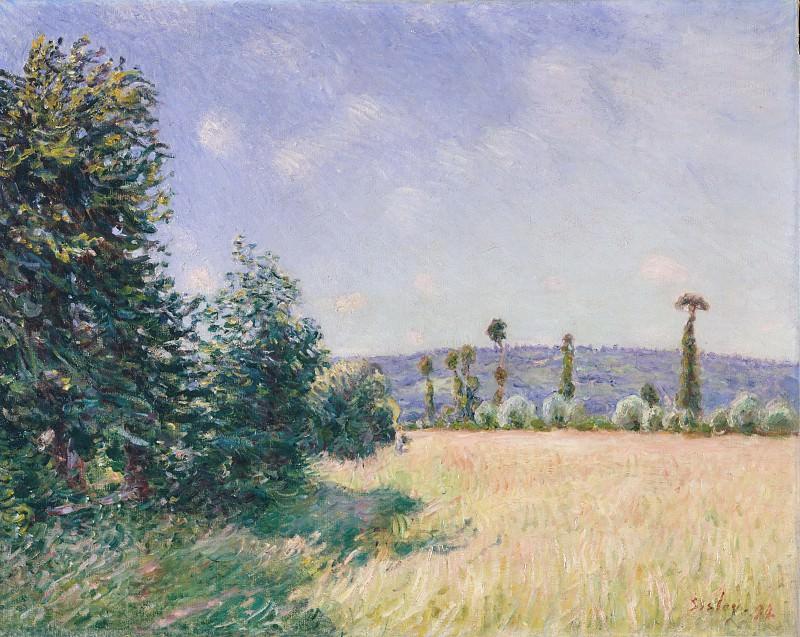 Alfred Sisley - Sahurs Meadows in Morning Sun. Metropolitan Museum: part 3