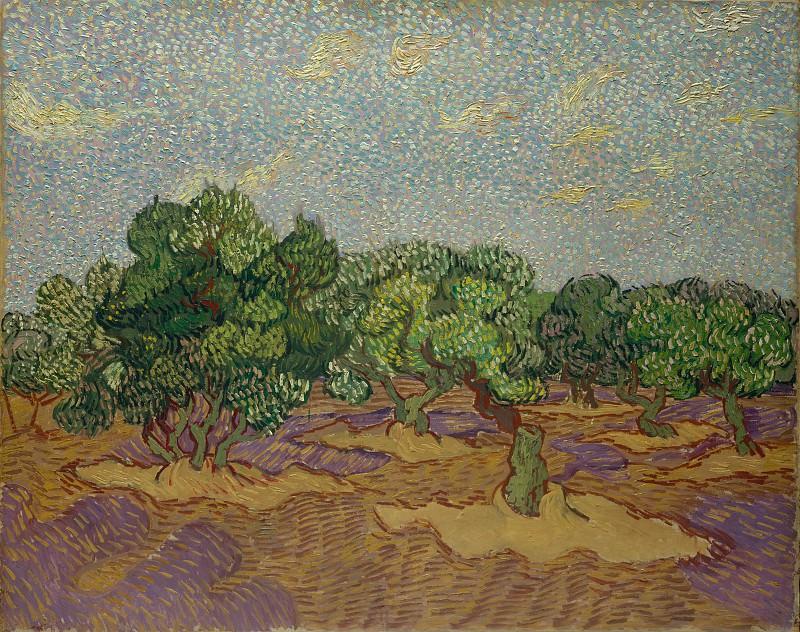 Olive Orchard. Vincent van Gogh