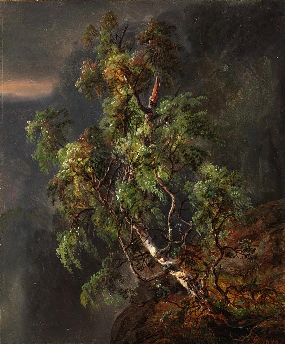Johan Christian Dahl - Birch Tree in a Storm. Metropolitan Museum: part 3