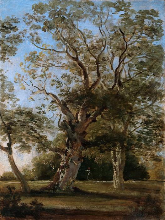Johann Georg von Dillis - Beech Trees in the English Garden, Munich. Metropolitan Museum: part 3