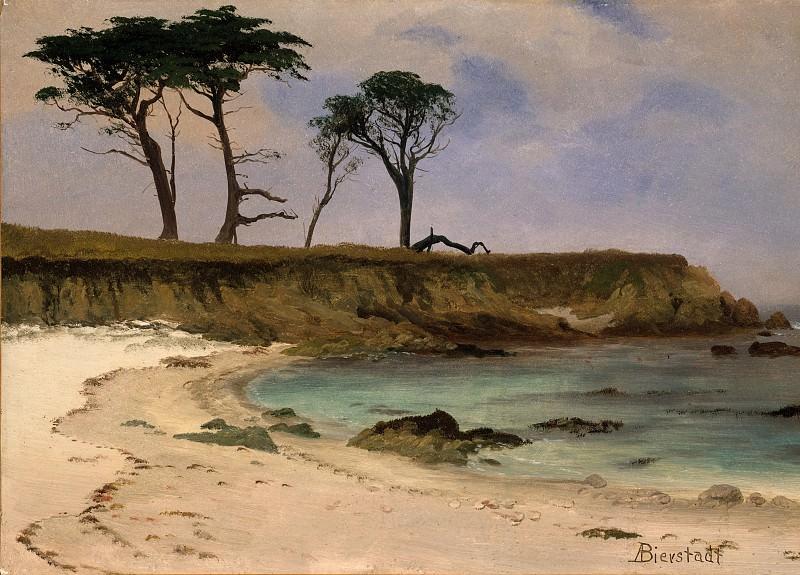 Albert Bierstadt - Sea Cove. Metropolitan Museum: part 3