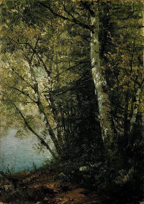 Кенсетт, Джон Фредерик - Эскиз с изображением бука. Музей Метрополитен: часть 3