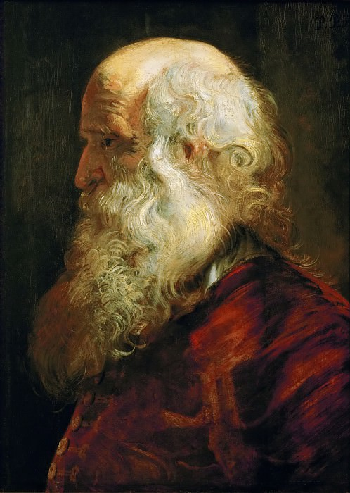 Peter Paul Rubens -- Study of an Old Man. Kunsthistorisches Museum
