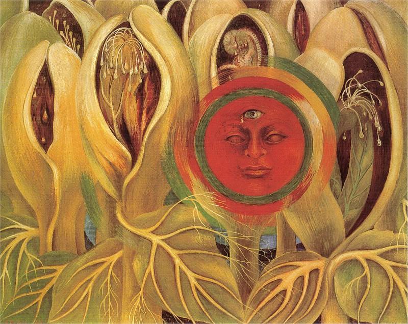 Солнце и жизнь. Фрида Кало