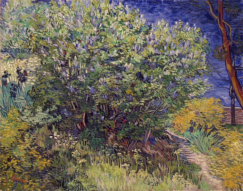 Van Gogh, Vincent - Bush. Hermitage ~ part 02