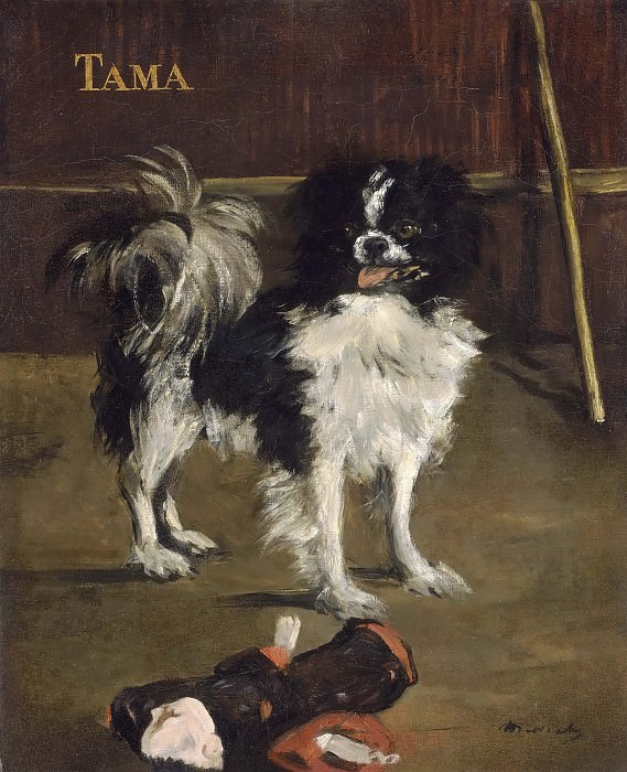 Tama, the Japanese Dog. Édouard Manet