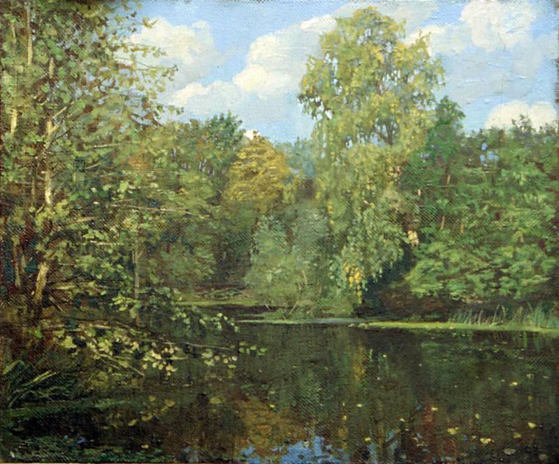 Barsky pond. Anohin Nikolay