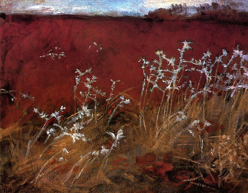 Thistles. John Singer Sargent