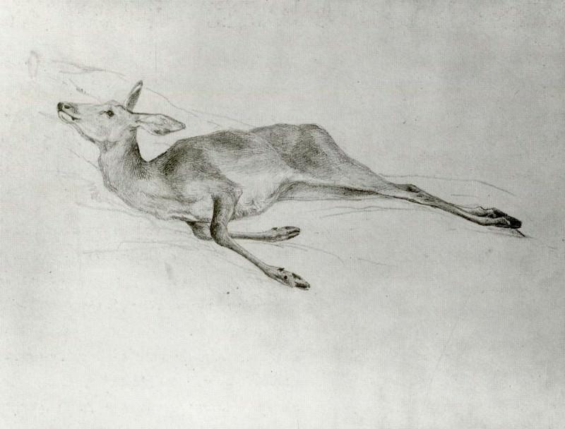 Deer. John Singer Sargent