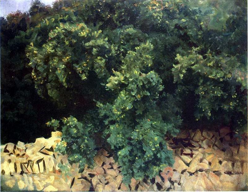 Ilex Wood, Majorca. John Singer Sargent