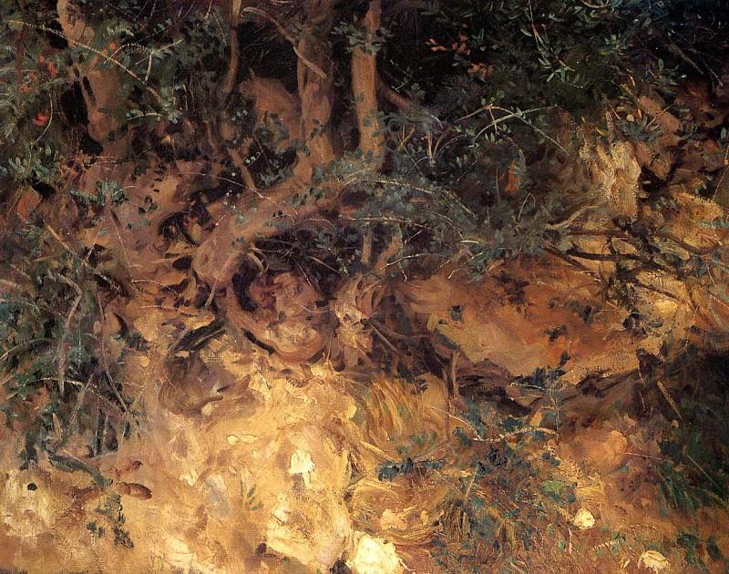 Valdemosa, Majorca. Thistles and Herbage on a Hillside. John Singer Sargent