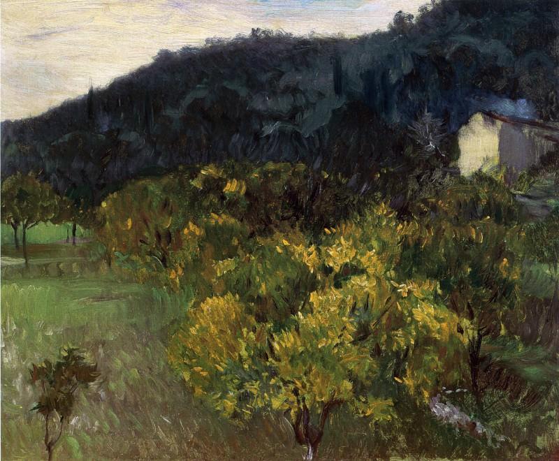Landscape near Grasse. John Singer Sargent