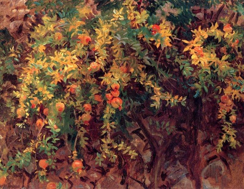 Pomegranates 2. John Singer Sargent