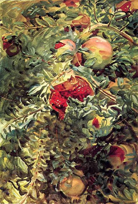 Pomegranates. John Singer Sargent
