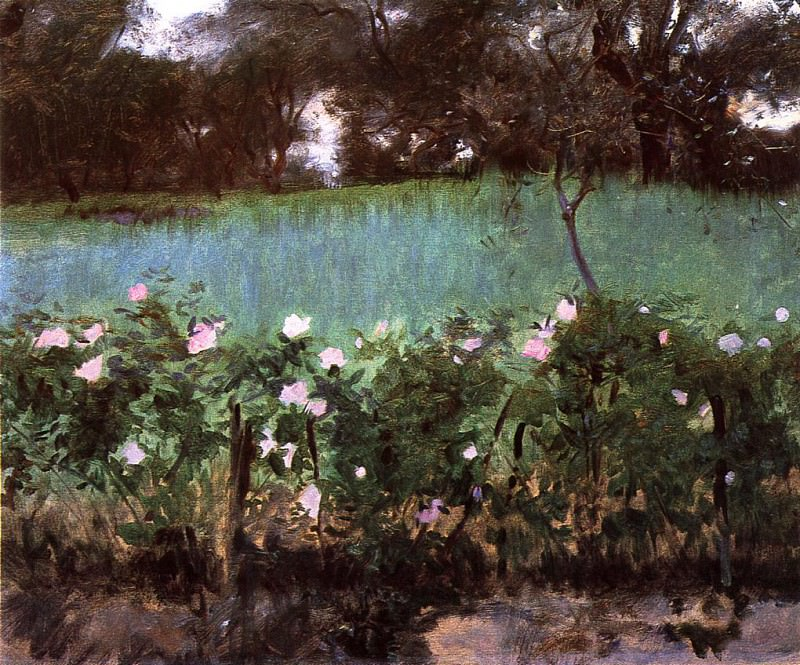 Landscape with Rose Trellis. John Singer Sargent
