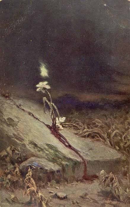 Блуждающий огонь. Котарбинский Вильгельм Александрович