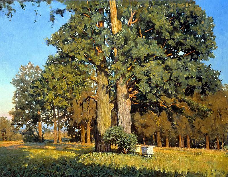 ANOKHIN Nicholas - Old oaks. 900 Classic russian paintings