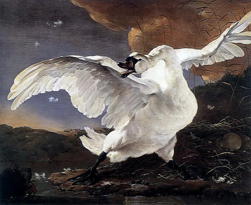 ASSELYN Jan The Threatened Swan. Dutch painters