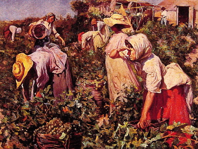 Picking grapes. Spanish artists