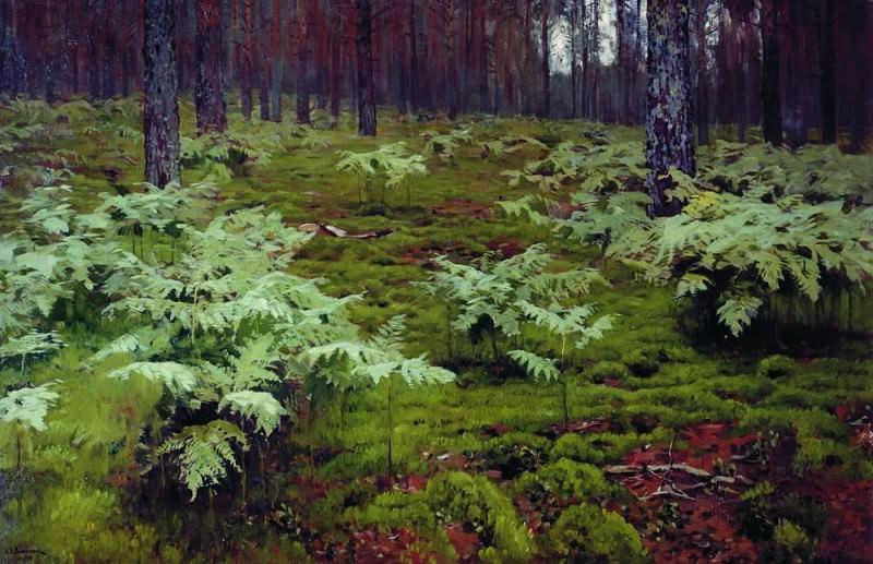 ferns in the woods. 1895. Isaac Ilyich Levitan