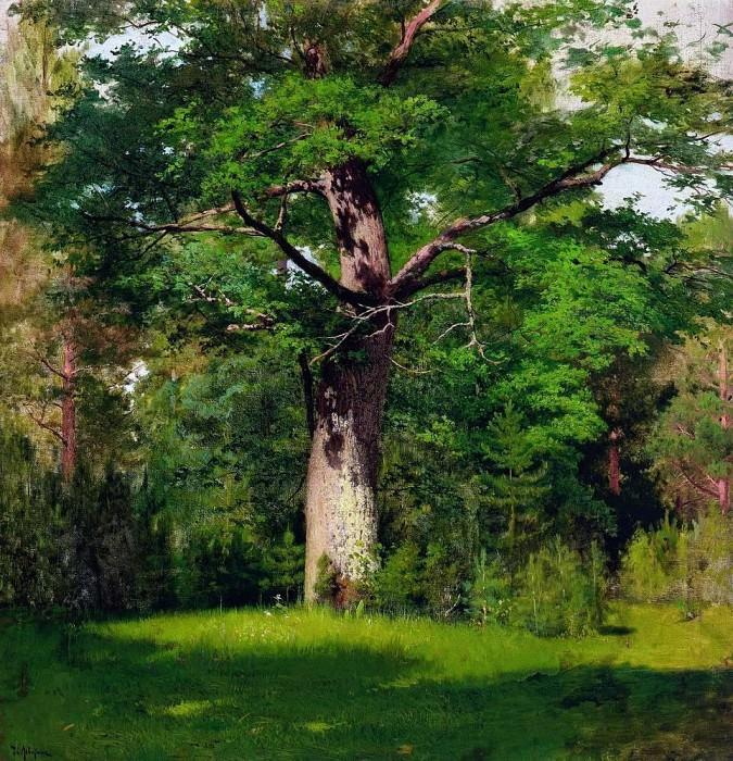 oak. 1880. Isaac Ilyich Levitan