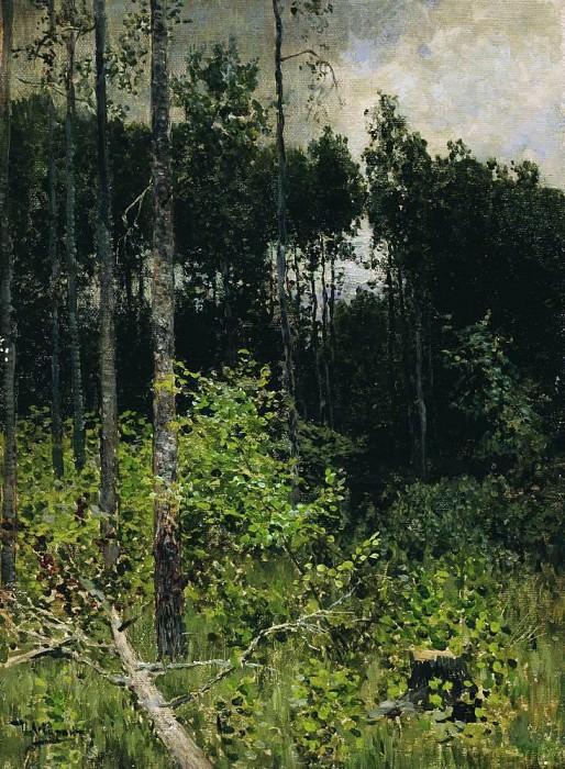 aspen grove. Gray day. 1884. Isaac Ilyich Levitan