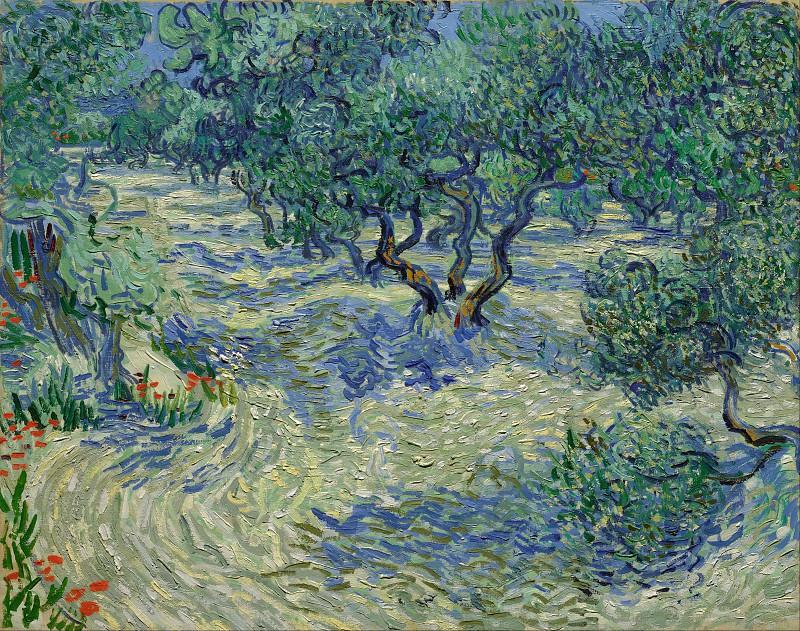 Оливковая роща. Винсент Ван Гог