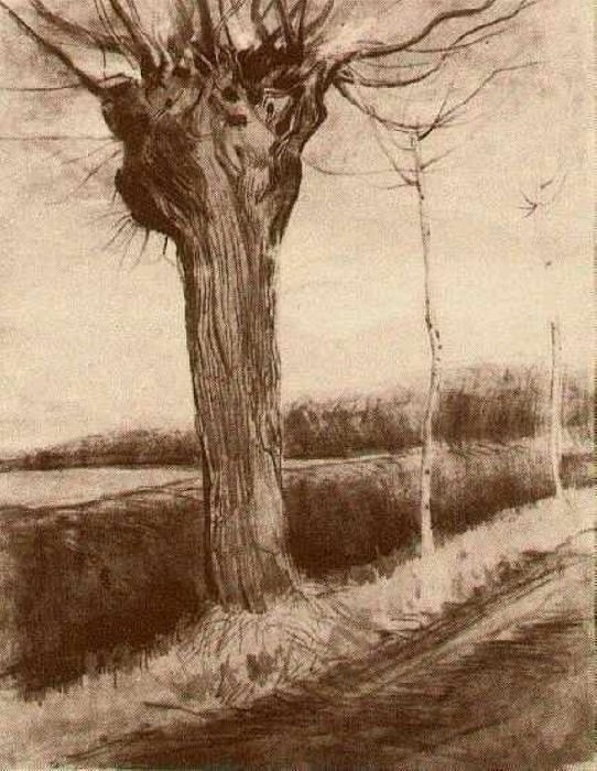 Pollard Willow. Vincent van Gogh