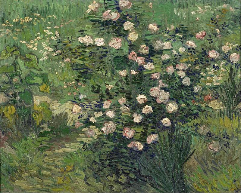 Rosebush in Blossom. Vincent van Gogh
