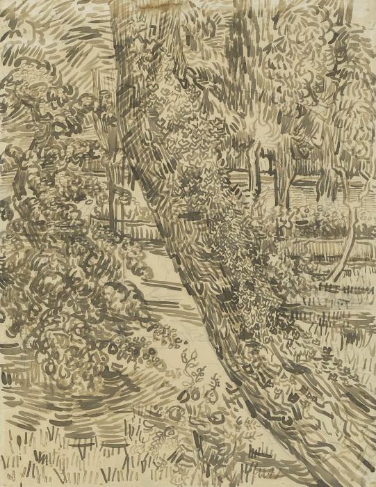 Ivy Trees at Asylum. Vincent van Gogh