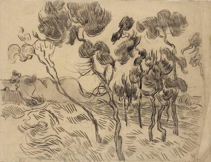 Пейзаж с соснами. Винсент Ван Гог