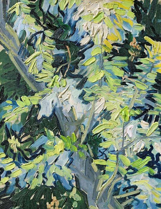 Blossoming Acacia Branches. Vincent van Gogh