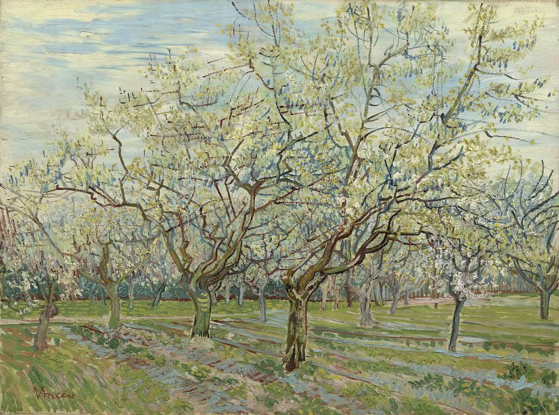 Orchard with Blossoming Plum Trees. Vincent van Gogh