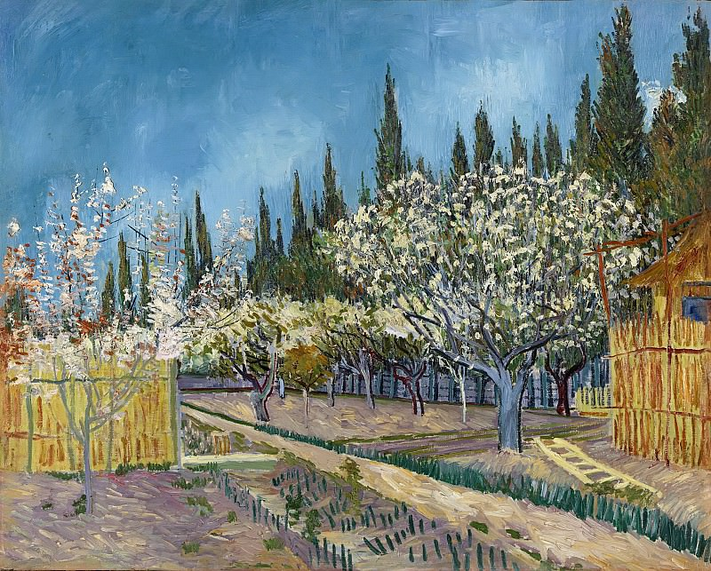 Orchard in Blossom, Bordered by Cypresses. Vincent van Gogh