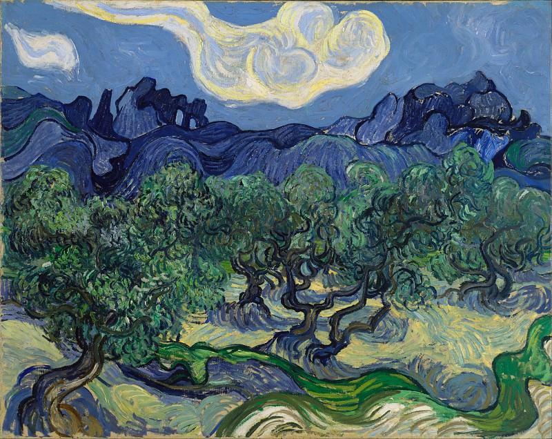 Olive Trees. Vincent van Gogh