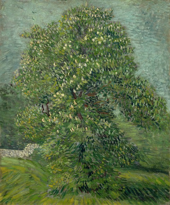 Chestnut Tree in Blossom. Vincent van Gogh
