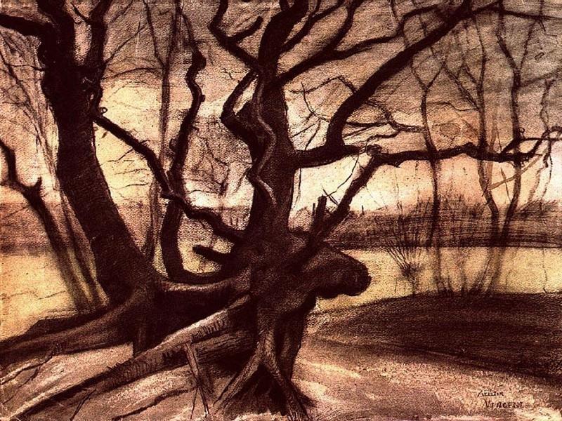 Study of a Tree. Vincent van Gogh