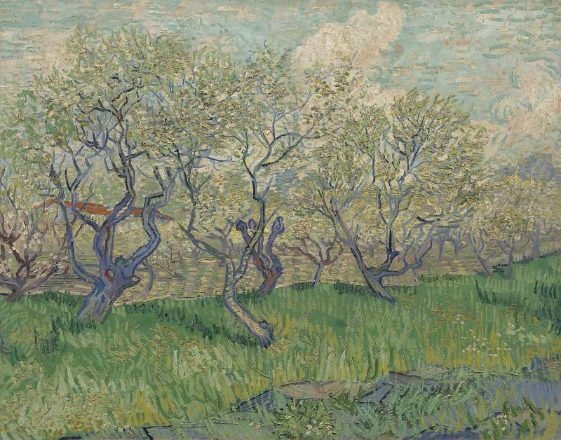 Фруктовый сад в цвету. Винсент Ван Гог