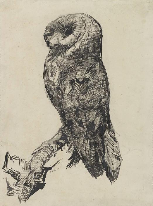 Barn Owl. Vincent van Gogh