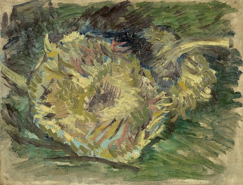 Two Cut Sunflowers. Vincent van Gogh