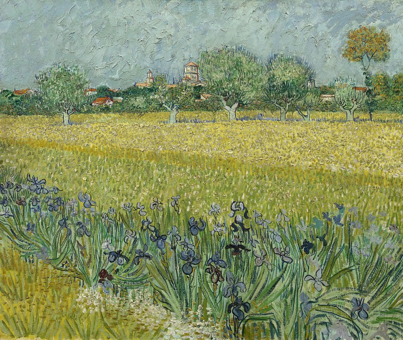 View of Arles with Irises in the Foreground. Vincent van Gogh