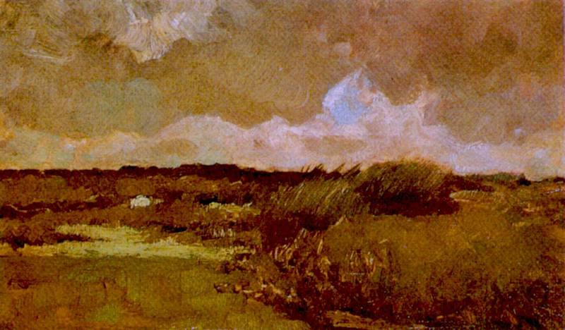 Marshy Landscape. Vincent van Gogh
