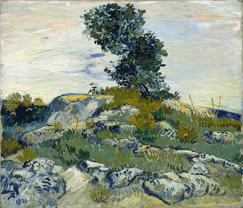 Rocks with Oak Tree. Vincent van Gogh