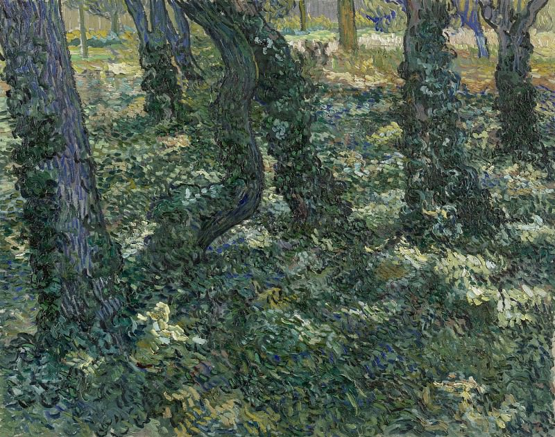 Tree Trunks with Ivy. Vincent van Gogh