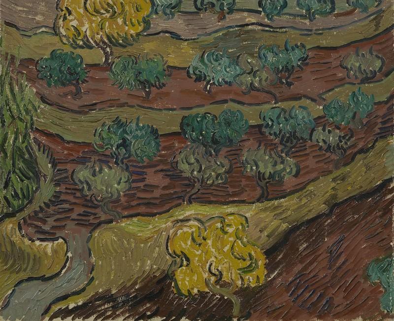 Olive Trees on a Hillside. Vincent van Gogh