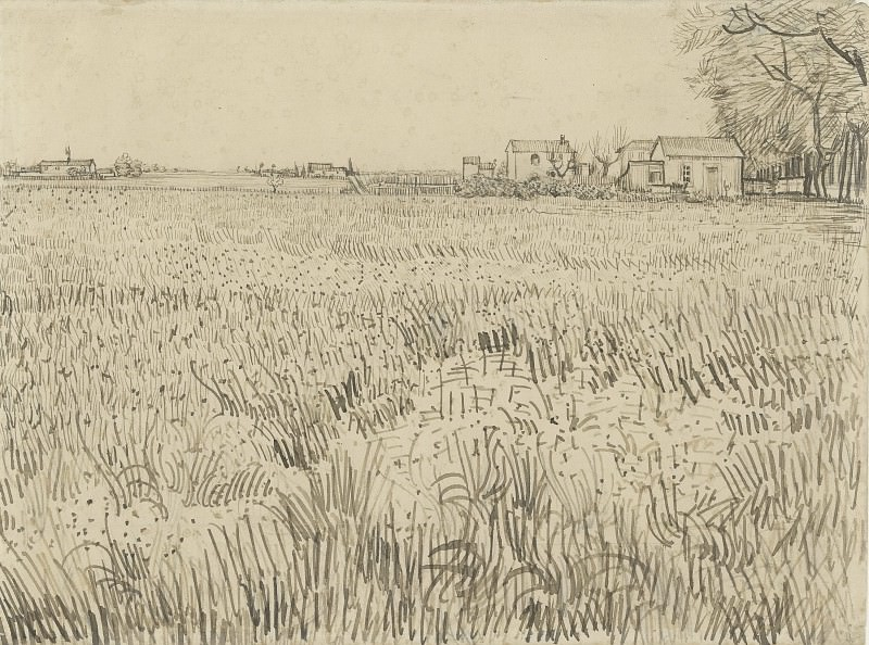 Field with Farmhouses. Vincent van Gogh